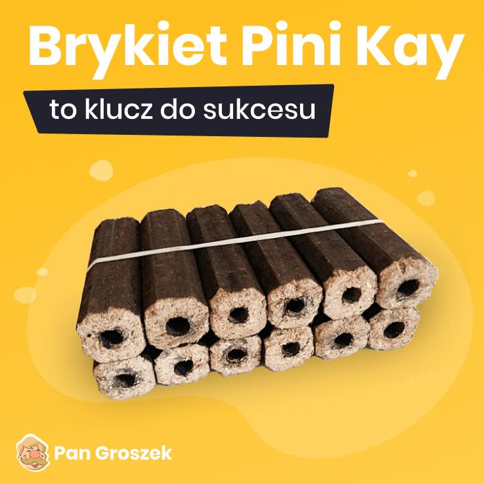 brykiet Pini Kay