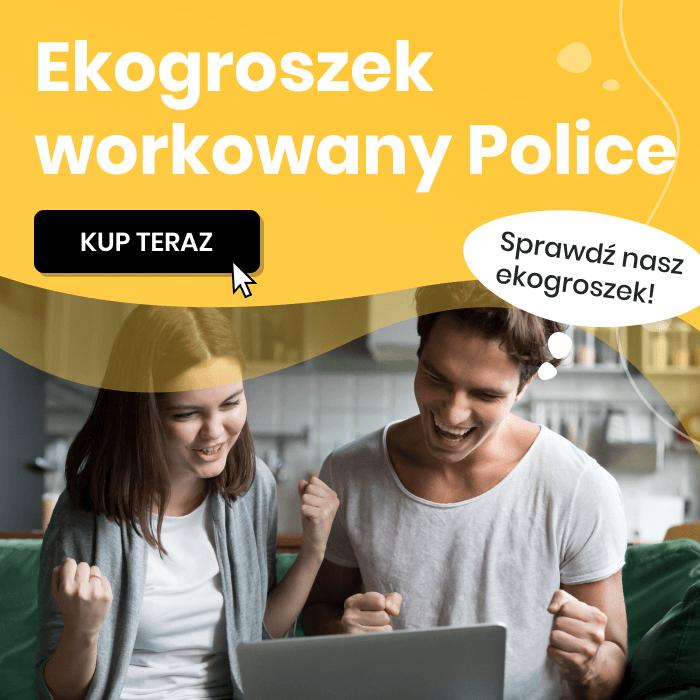 Ekogroszek workowany Police