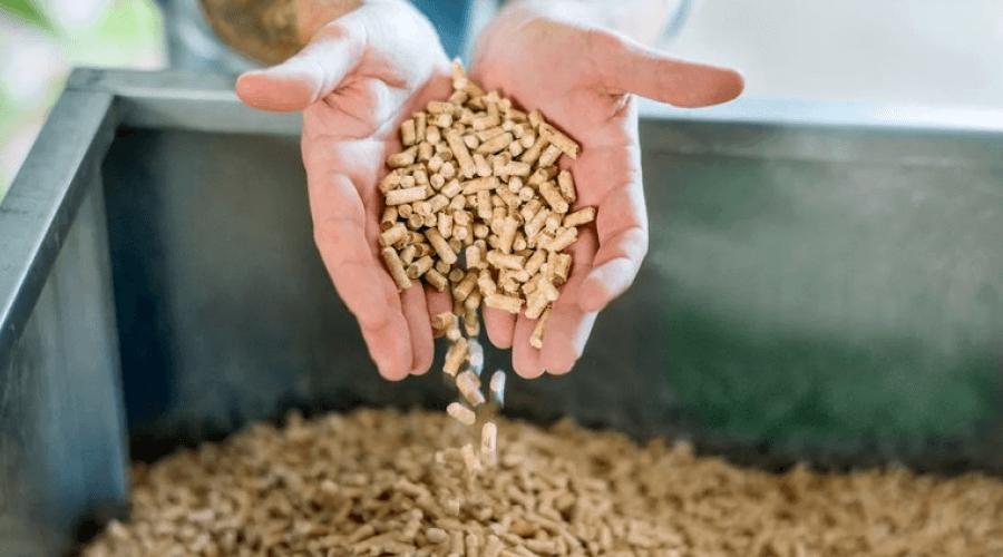 Cena pelletu – jaki (lub który) pellet kupić?
