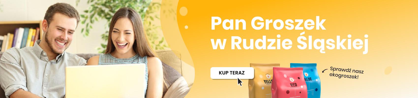 Ekogroszek workowany - Ruda Śląska
