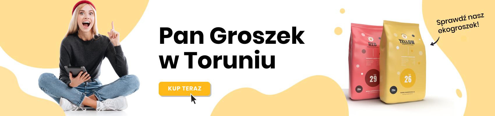 Ekogroszek workowany - Toruń