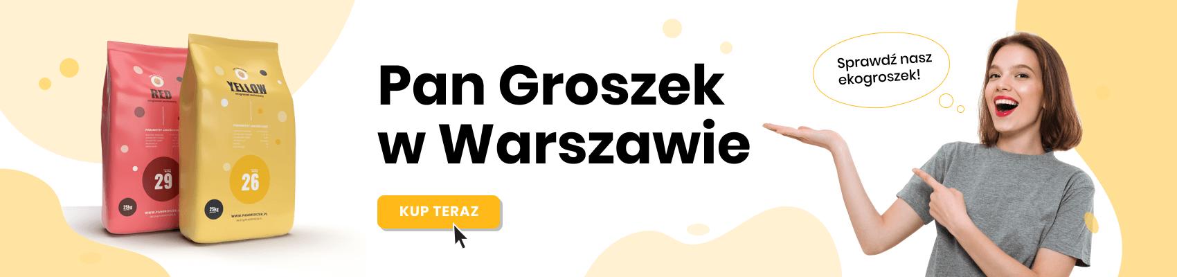 Ekogroszek workowany - Warszawa