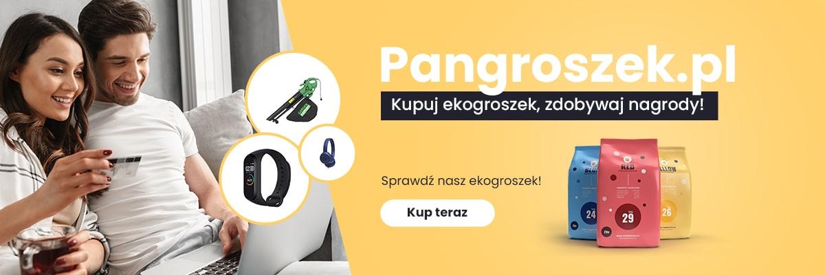 Katalog nagród Pana Groszka